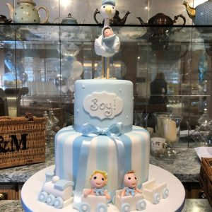 Baby Shower for a Boy - Stork Cake